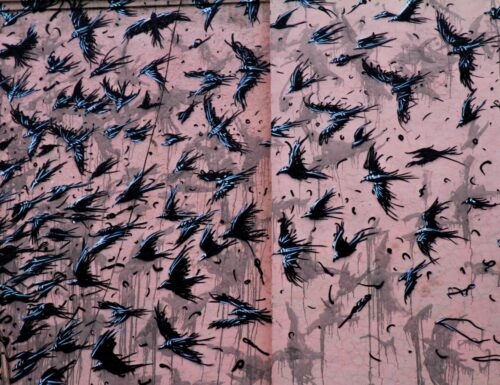 Feathers and feminism: global street artists transform Delhi – in pictures